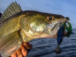 Рыбалка на реке кизань